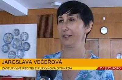 Kulturní den 2012